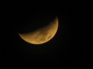 nature-dark-moon-night-photography